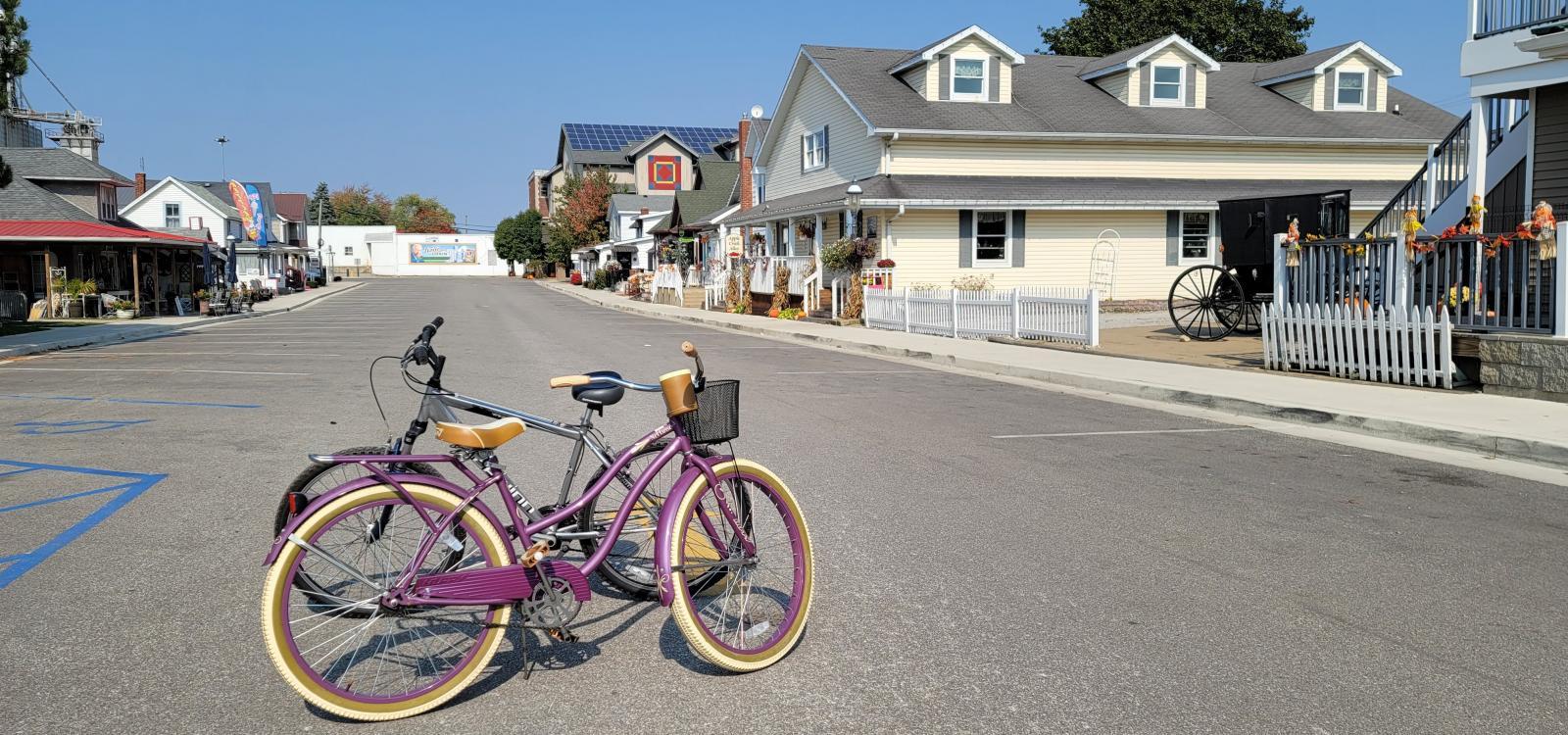 Bicycling on the Pumpkin Vine & through town